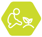 Tests de faculté germinative